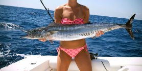 Dubai Sport Fishing!
